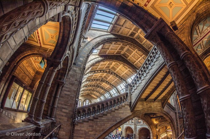 Natural History Museum.